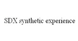 SDX Synthetic Experience