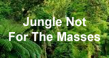 HearMe - Jungle Not For The Masses