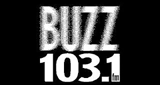 103.1 The Buzz