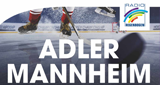 Radio Regenbogen Adlerstream