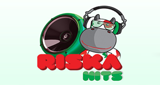 Riska Music Rádió - Hits