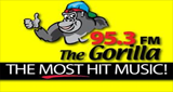 95.3 The Gorilla - WZNF