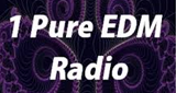 1 Pure EDM Radio