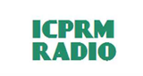 ICPRM Network Group Station