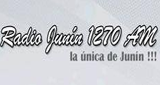 Radio Junin