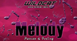 WildCat - Melody