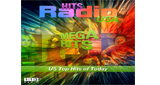 113.FM Hits USA (Top 40 / Hits)